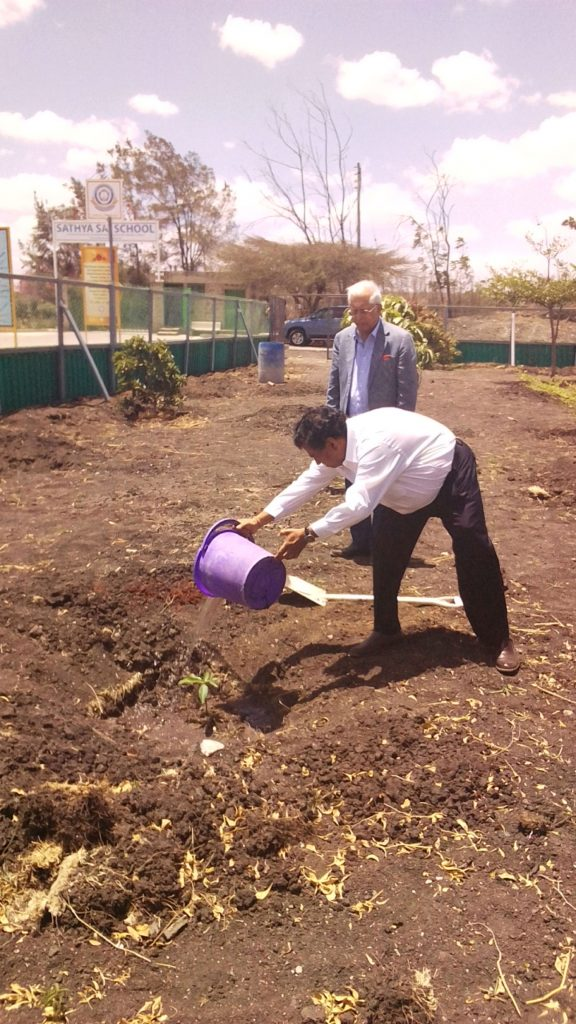 Tree Planting by Mr. Sambasiava Rao - Mar 2019